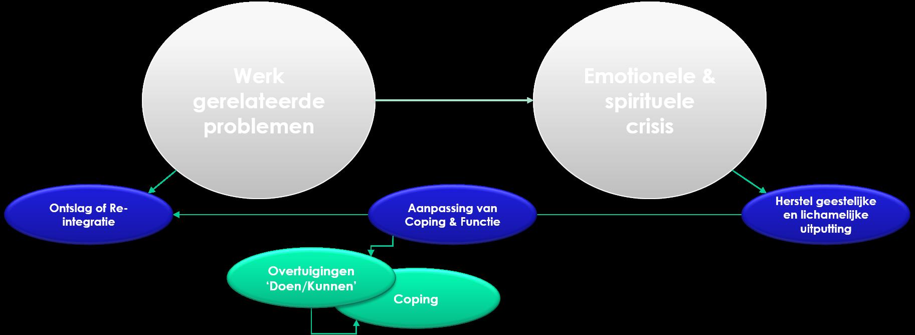 functie analyse cognitieve gedragstherapie