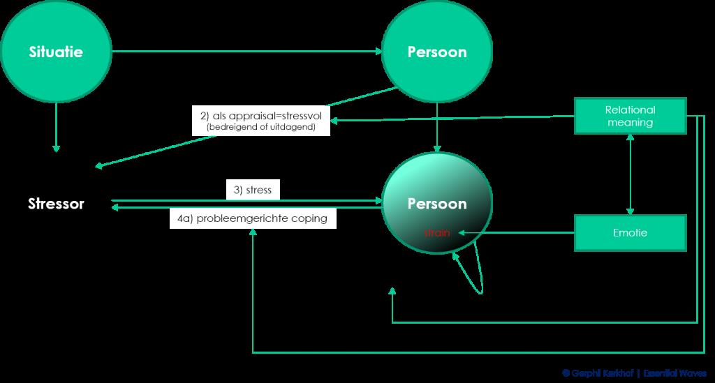 De stresstheorie van Richard Lazarus schematisch weergegeven: stress als resultaat van de 'transactie' tussen individu en situatie (werk)