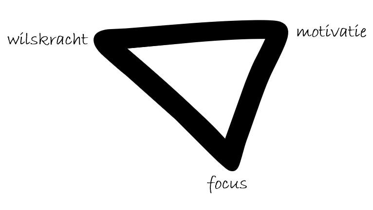 het motivatie systeem als driehoek van wilskracht, focus en motivatie